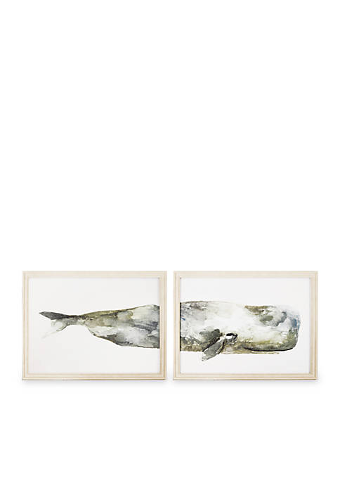Whale Split Frame