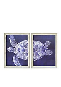 Turtle Split Frame