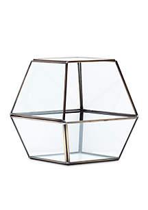 Elements Facets Windowpane Terrarium