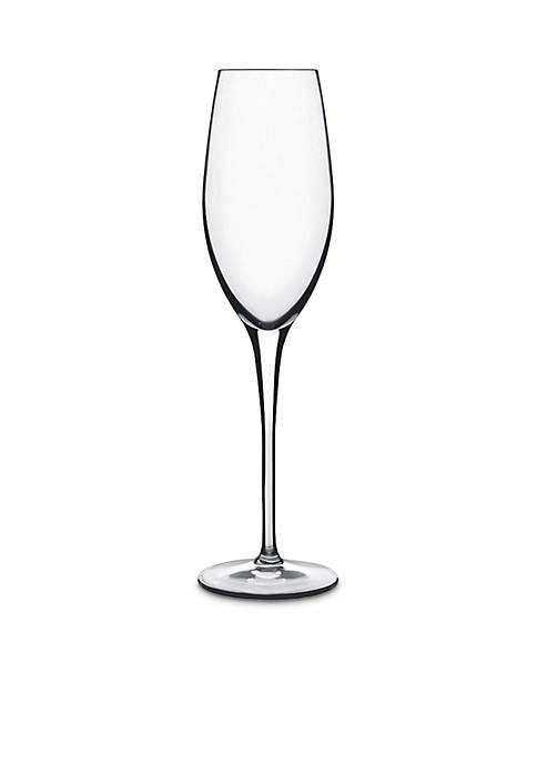 Renaissance Champagne Glasses