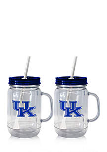 20-oz. NCAA Kentucky Wildcats 2-pack Straw Tumbler with Handle