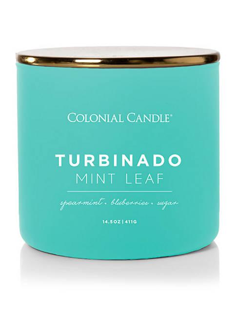 Colonial Candle® Turbinado Mint Leaf Candle