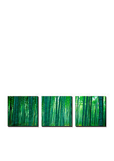 Art.com Bamboo Forest, Sagano, Kyoto, Japan, Canvas Art Set,-Online Only