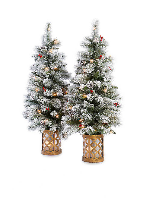 Home Accents® 4-ft Pre-Lit Flocked Porch Trees, Set