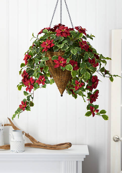 Poinsettia and Variegated Holly Plant with Hanging Cone Basket