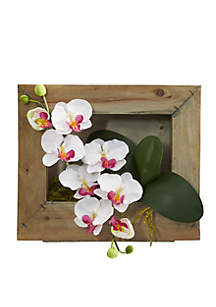 Phalaenopsis Orchid Artificial Arrangement in Picture Frame