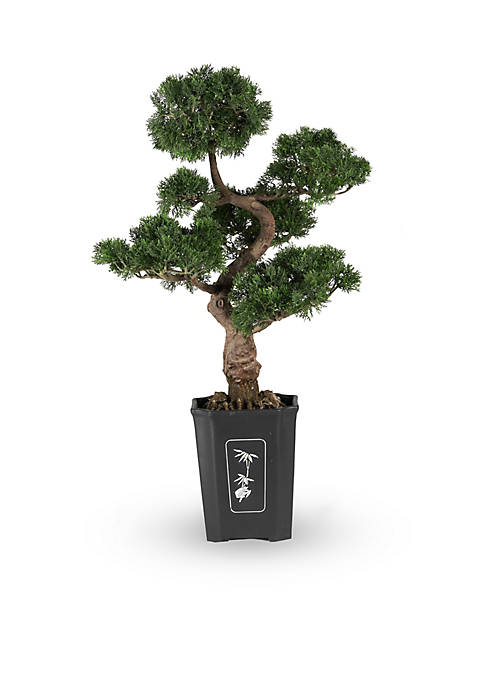 Nearly Natural 36-in. Cedar Bonsai Silk Plant
