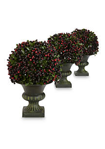 Pepper Berry Ball Topiary Plants