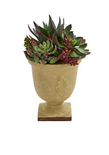Mixed Succulent Artificial Plant