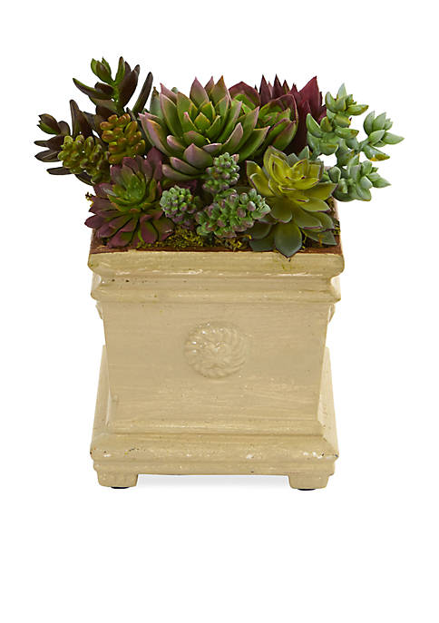 Nearly Natural Mixed Succulent Artificial Plant