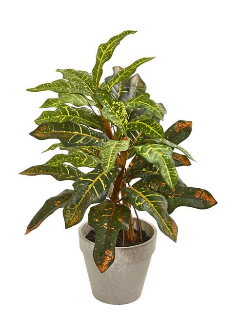 Nearly Natural Croton Plant