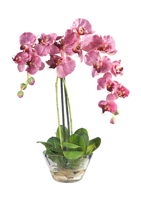 Nearly Natural Phalaenopsis with Glass Vase Silk Flower