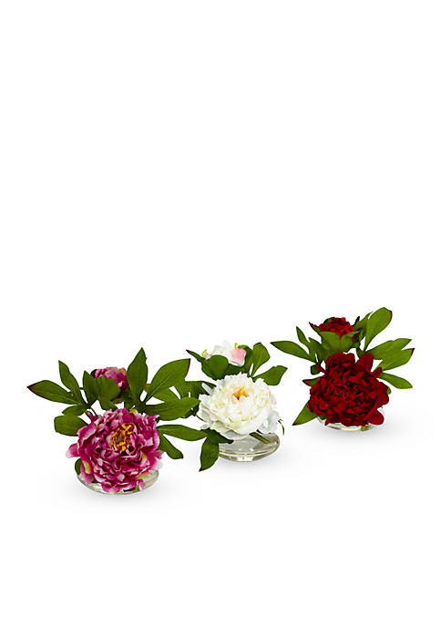 Peony with Glass Vase Set