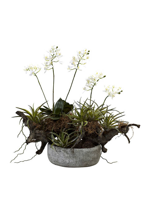 Nearly Natural Orchid, Succulent Garden with Driftwood with