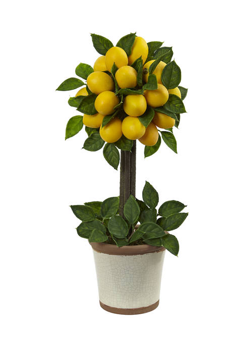 Nearly Natural Lemon Ball Topiary Arrangement