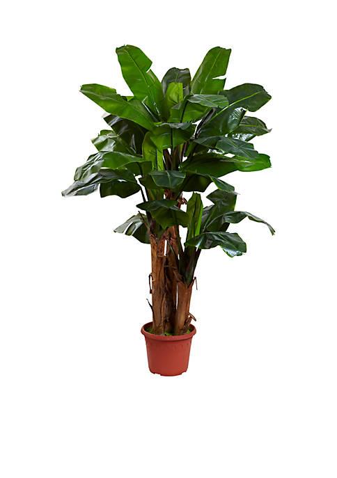 7-Foot Giant Triple Stalk Banana Tree UV Resistant -Indoor/Outdoor