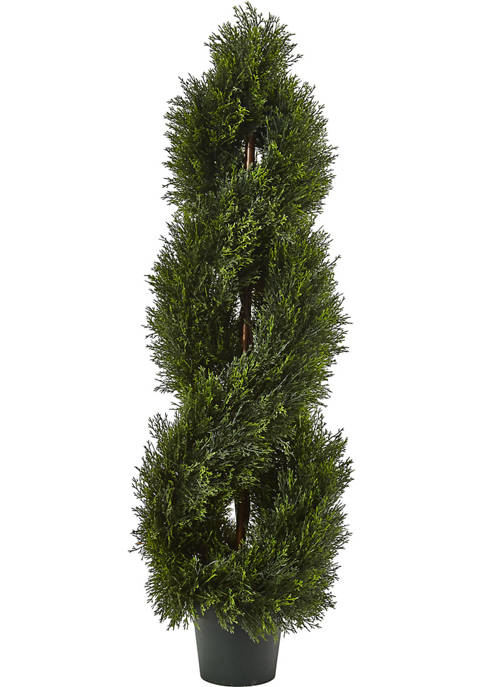 Double Pond Cypress Spiral Topiary  with Leaves Indoor/Outdoor