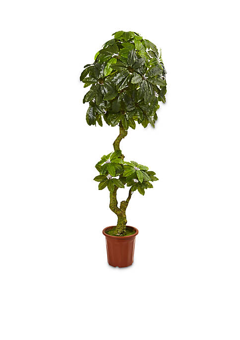 Nearly Natural 6-ft. Schefflera Artificial Tree (Indoor/Outdoor)