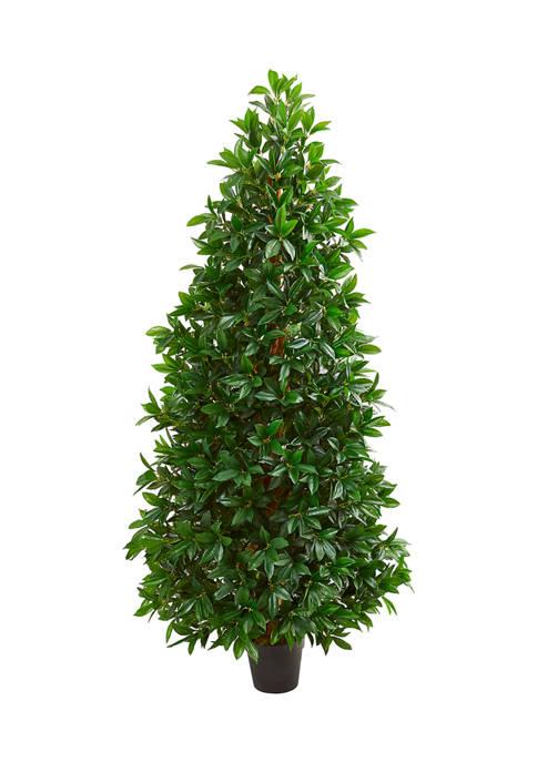 Bay Leaf Cone Topiary Tree  Indoor/Outdoor