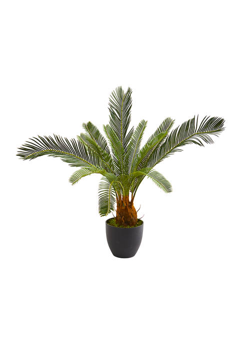 Nearly Natural Cycas Plant