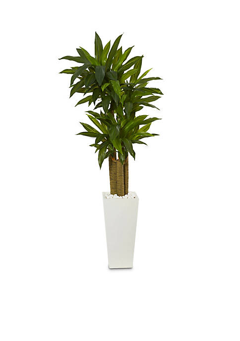 Nearly Natural Cornstalk Dracaena Artificial Plant