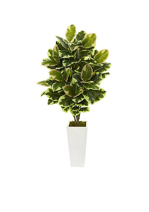 Variegated Rubber Leaf Artificial Plant