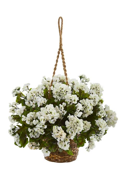 Geranium Hanging Basket Plant Indoor/Outdoor