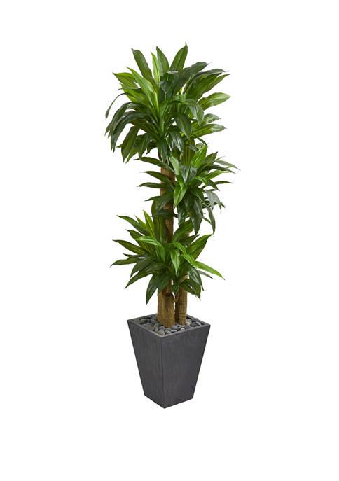 Nearly Natural 5.5 Foot Cornstalk Dracaena Artificial Plant
