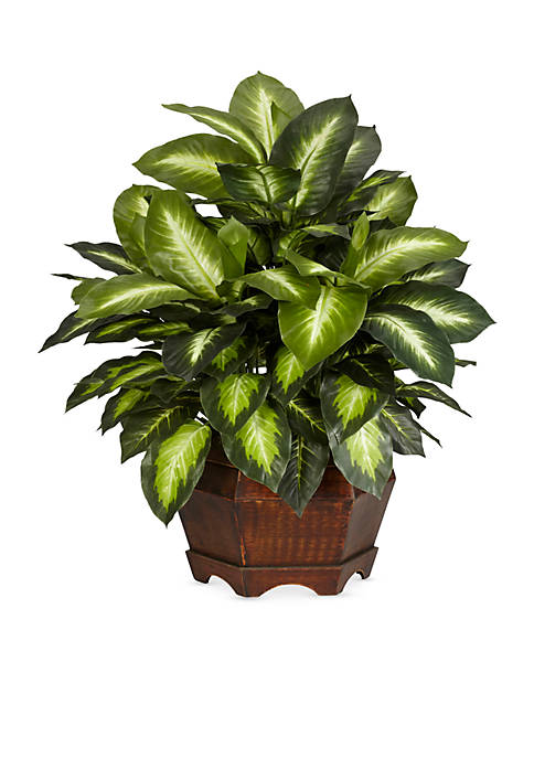 Nearly Natural 24-in. Golden Dieffenbachia Silk Plant