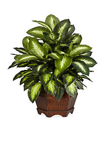 24-in. Golden Dieffenbachia Silk Plant