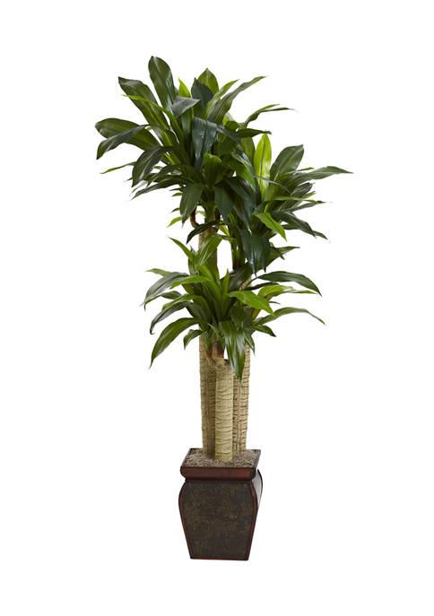 Nearly Natural Cornstalk Dracaena Silk Plant with Vase