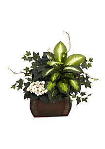 African Violet, Dieffenbachia, and  Ivy Silk Plant with Chest