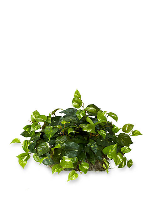 Nearly Natural Pothos Ledge Plant Silk Plant