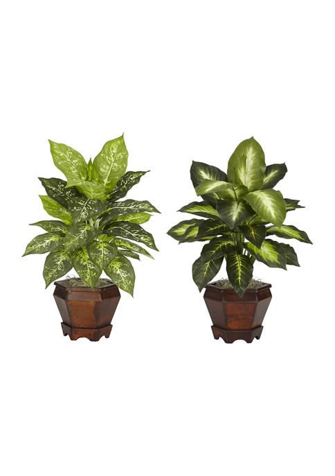 Dieffenbachia with Wood Vase Silk Plant - Set of 2