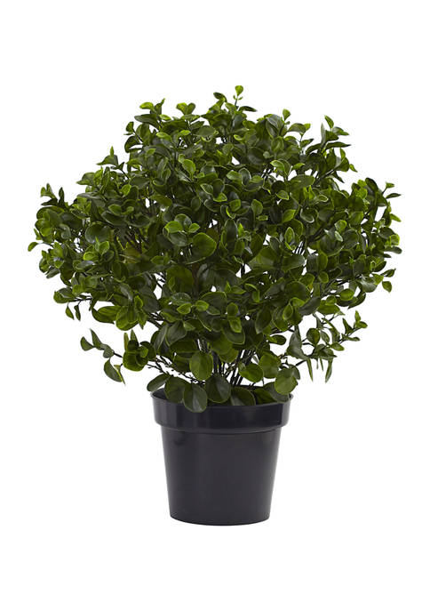 Nearly Natural Peperomia Plant Indoor/Outdoor