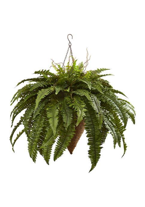 Nearly Natural Giant Boston Fern with Cone Hanging
