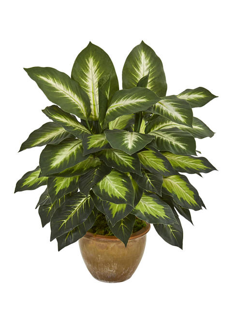 Nearly Natural Dieffenbachia Artificial Plant in Ceramic Planter