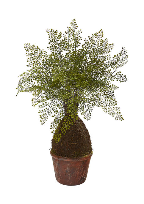 Nearly Natural Maiden Hair Fern Plant in Decorative