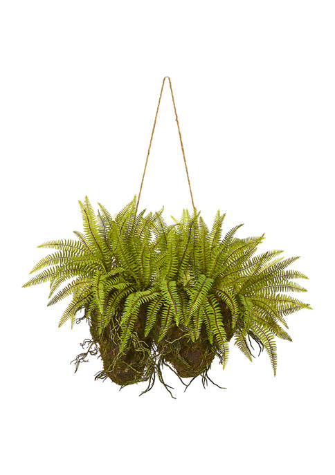 Nearly Natural Forest Fern Hanging Plant