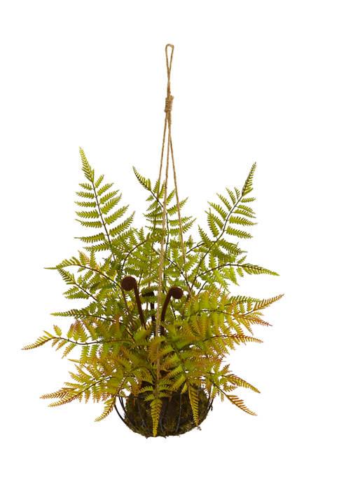 Fern Plant in Metal Hanging Basket