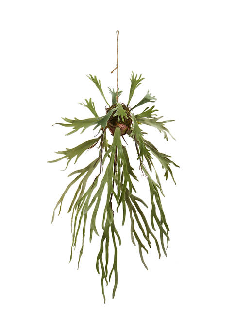 Nearly Natural Staghorn Hanging Plant