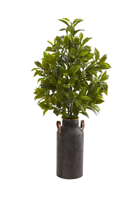 Nearly Natural Coffee Leaf Plant in Decorative Canister