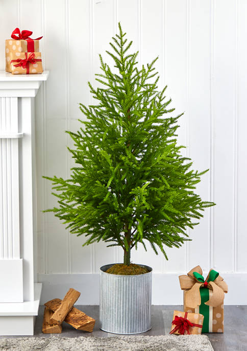 Nearly Natural 49 Inch Norfolk Island Pine Tree
