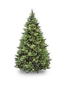 National Tree Company® Carolina Pine Tree with Clear Lights