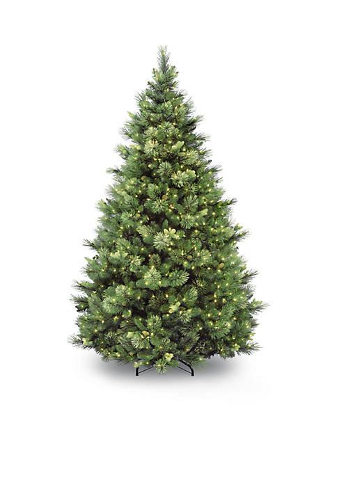 National Tree Company® Carolina Pine Tree with Clear