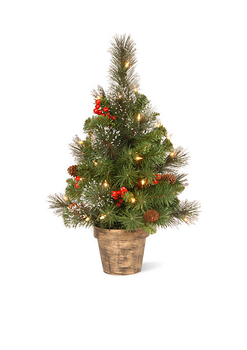 National Tree Company® Crestwood Spruce Entrance Tree With