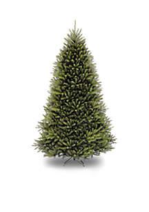 National Tree Company® Dunhill Fir Tree