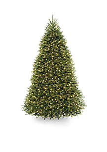 Dunhill Fir Tree with Clear Lights and PowerConnect