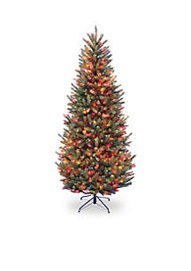 Dunhill Fir Slim Tree with Multicolor Lights