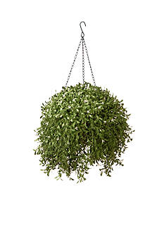National Tree Company® Argentea Hanging Basket